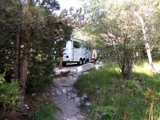 Campsite In Upper Lehman Creek