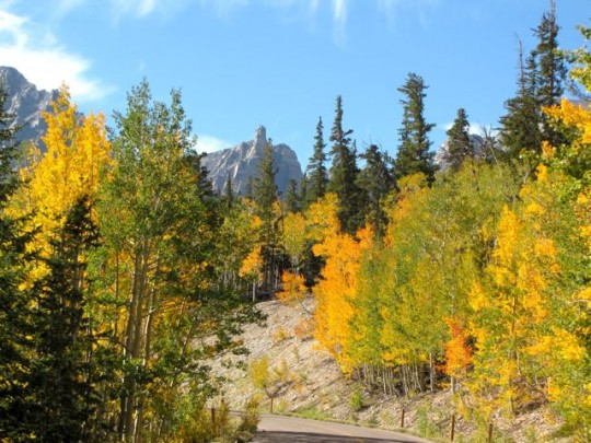 Road To Wheeler Peak