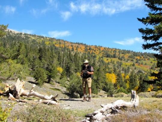 Hiking The Alpine Loop Trail