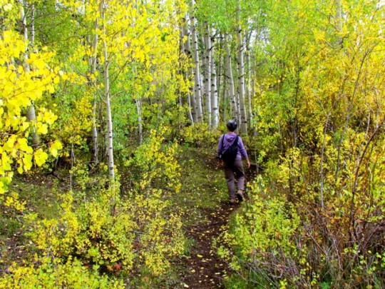 Hiking The Ramparts Trail