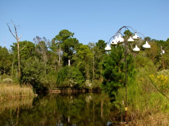 Pascagoula Audubon Center