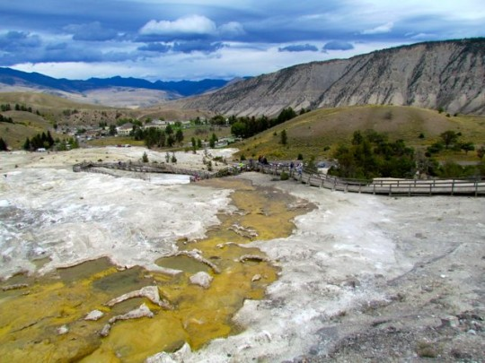 The Boardwalk Around Mammoth Hot Springs