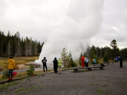 Riverside Geyser Audience