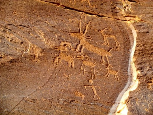 Elk And Other Petroglyphs