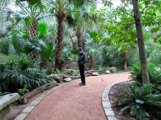 Botanical Garden In Zilker Park