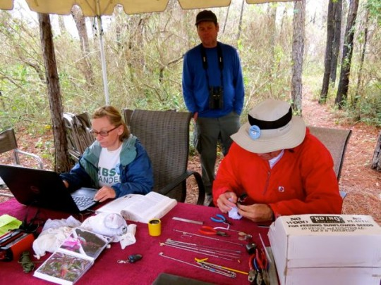 Recording Bird Banding Info