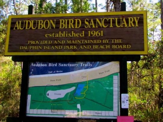 Audubon Sanctuary On Dauphin Island