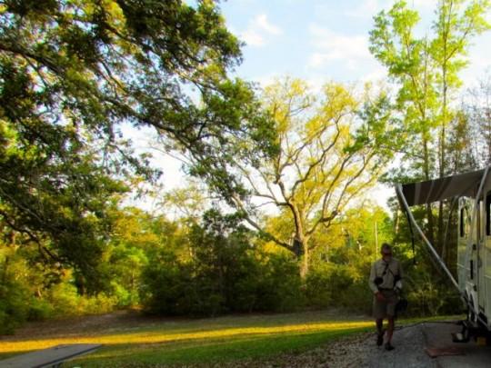 Campsite Davis Bayou