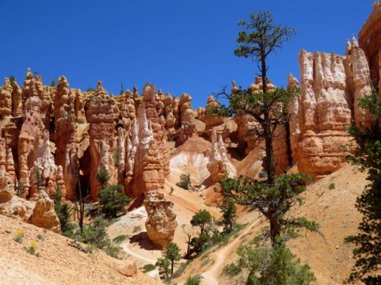 Hoodoo City