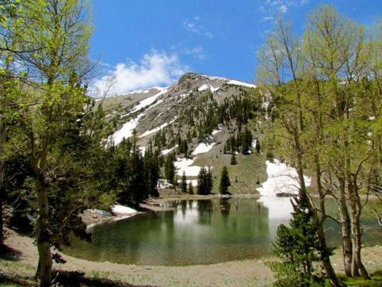 Teresa Lake 10,000 Feet
