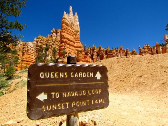Queen's Garden And Navajo Loop