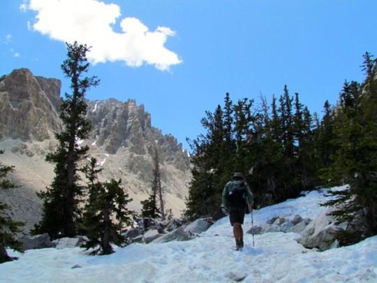 Turn Around Point On The Glacier Trail