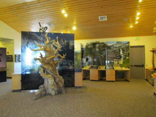 Inside The Visitor's Center