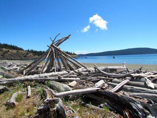 Driftwood On Spencer Spit