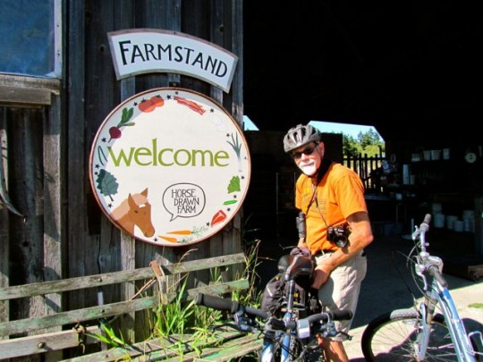 Our Favorite Farm Stand