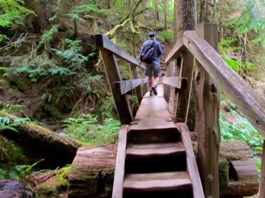 Interesting Wooden Bridges