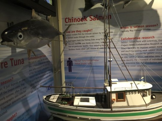 Exhibits On Sustainable Fisheries