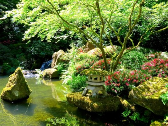 Pond In The Japanese Garden