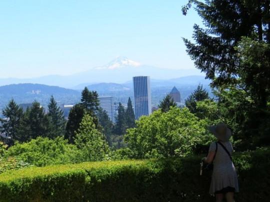 Portland Skyline From The Japanese Garden