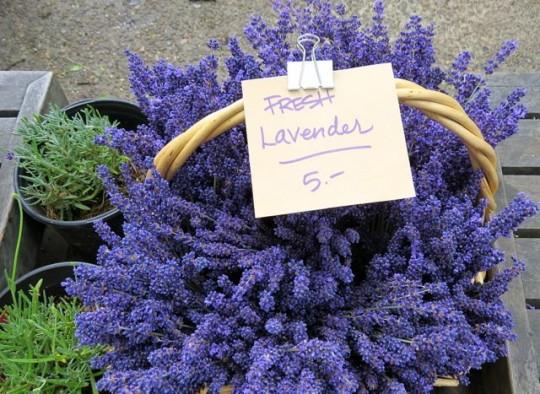 Fresh Lavender At The Market