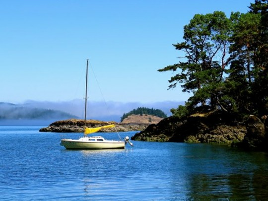 Beautiful Day In Hunter Bay