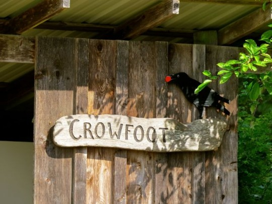 Crowfoot Organic Berry Farm