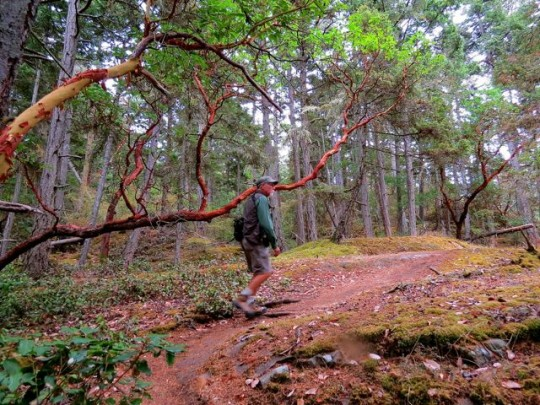 Hiking Chadwick Hill