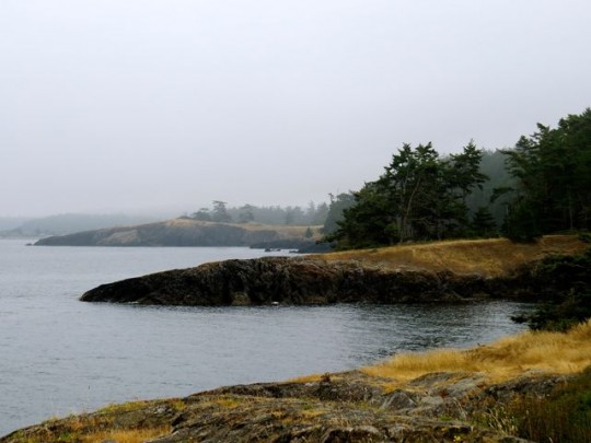 Foggy Day At Iceberg Point