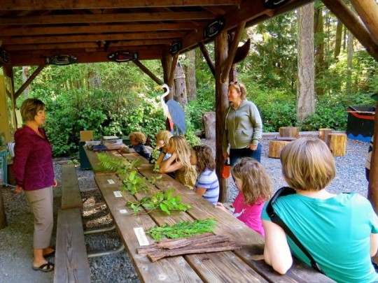 Teaching About Native Plants