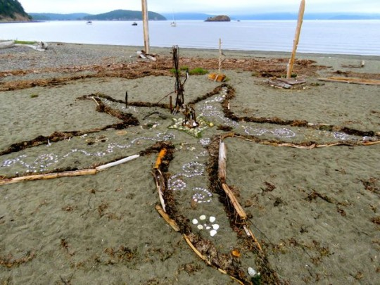 A Tribute To Sea Stars