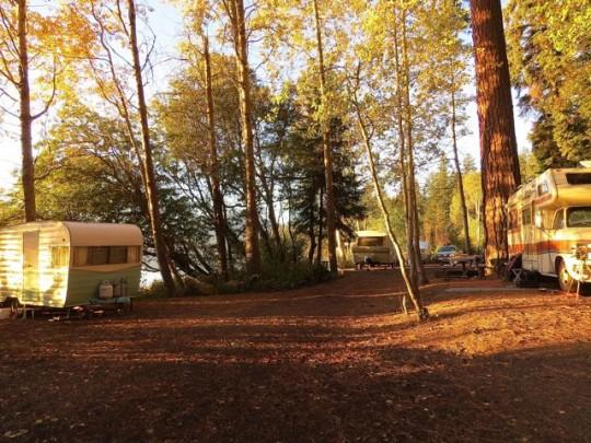 Campsites Snuggled Along The Shoreline