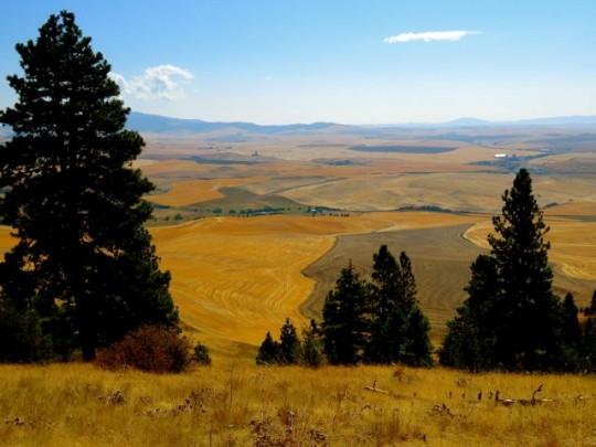 Views From Kamiak Butte