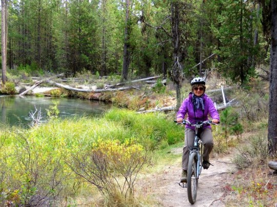 Navigating The Rocky, Rooty Trails