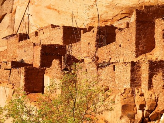 Dwellings From 1250 A.D.