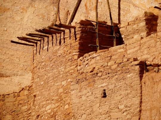 Original Timbers