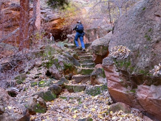 In The Bottom Of The Canyon
