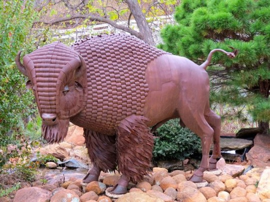 Buffalo Sculpture In Medicine Park