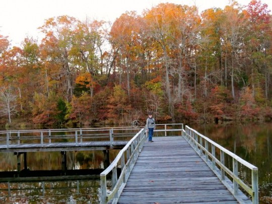 Fall Colors In Tupelo, Tombigbee SP
