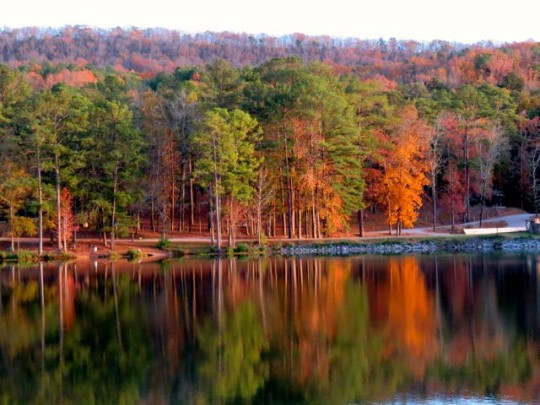 Fall Colors At Oak Mountain State Park