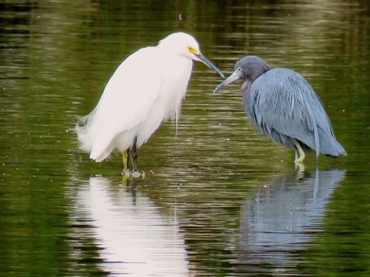 Sharing Fishing Stories