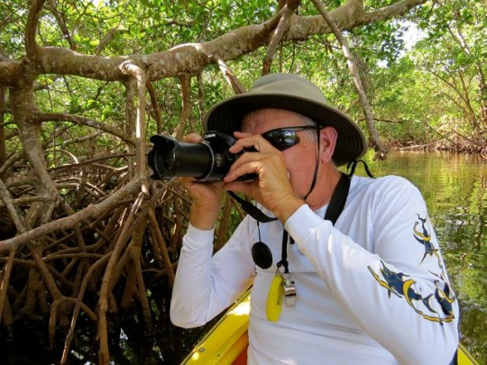 Photography In The Mangroves