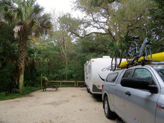Spacious Campsites at Anastasia State Park