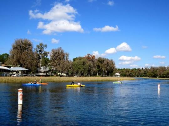 Kayaking The Rainbow River