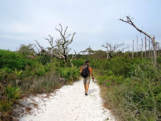 On The Coastal Trails
