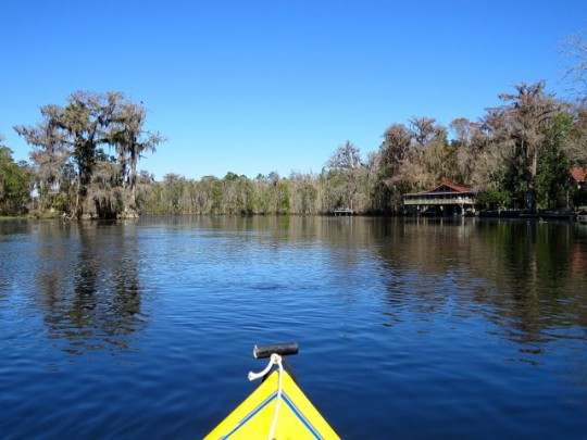 Kayaking The Wakulla River