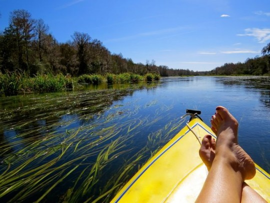 A Relaxing Float Downriver On The Wacissa
