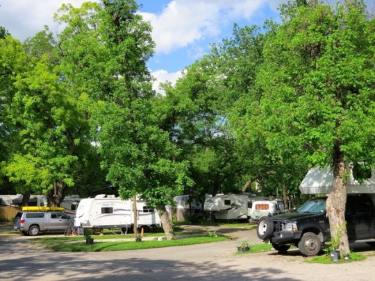 At Home In Pecan Grove RV Park