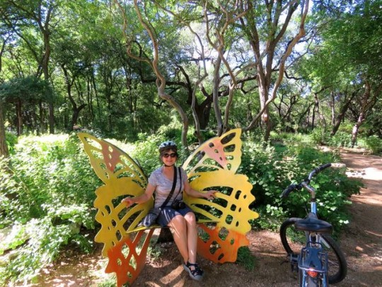 In The Butterfly Garden