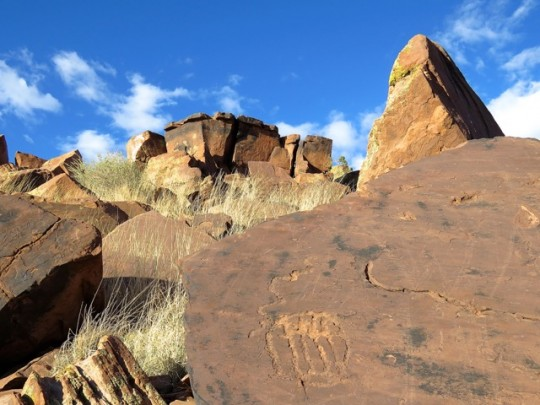Petroglyphs Hidden In The Rocks