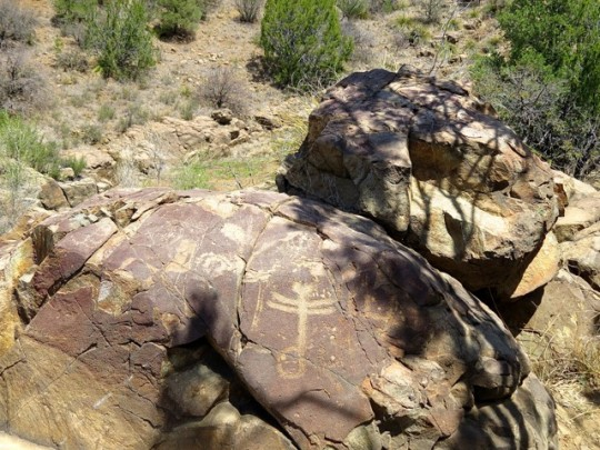The Dragonfly Petroglyph